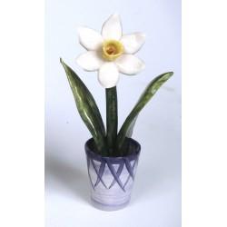 Vaso con Narciso Bianco