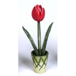 Vaso con Tulipano Rosso