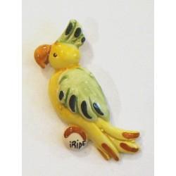 Calamita piccola pappagallo